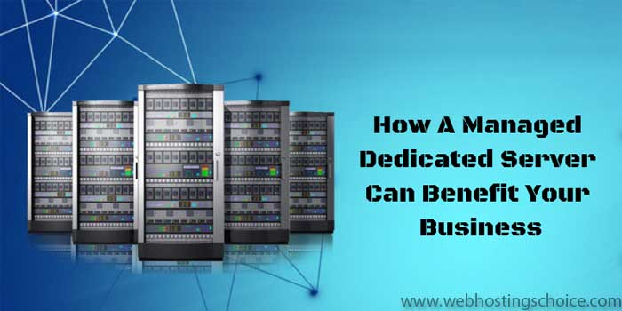 Dedicated Web Hosting
