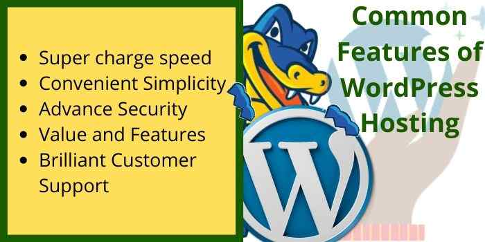 HostGator WordPress Hosting Common Features